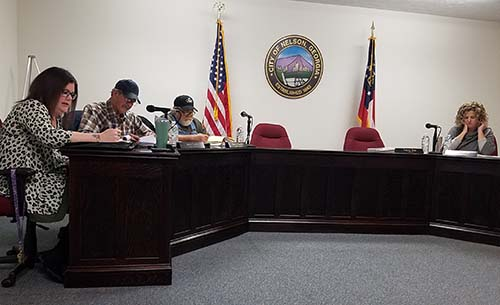 Nelson City Council November 2017