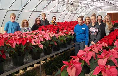 PHS Poinsettia Sale Scheduled