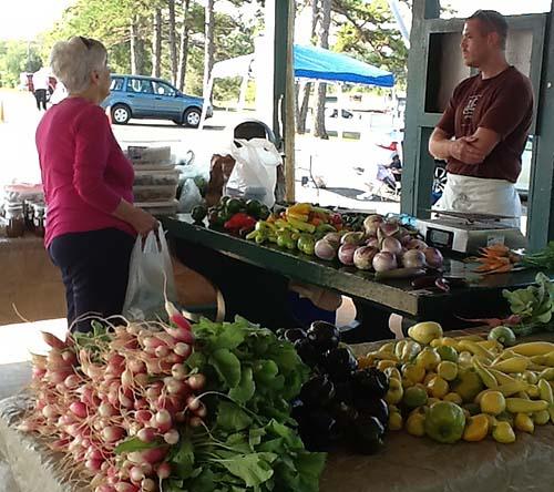 Jasper Farmers Market Report